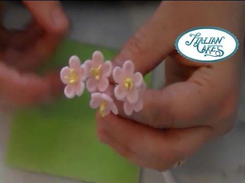 Fiorellini in pasta di gomma (gumpaste blossoms) by ItalianCakes - YouTube