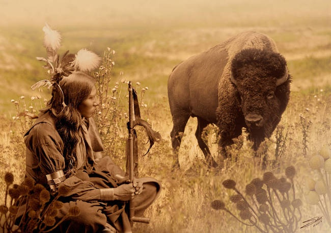 sioux relationship with the land