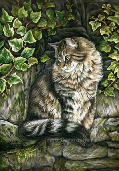 Colored pencil of a lovely tabbie cat - Vantage Points Irina Garmashova