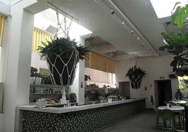 Smalltown macrame - The ivy nightclub pot hangings.