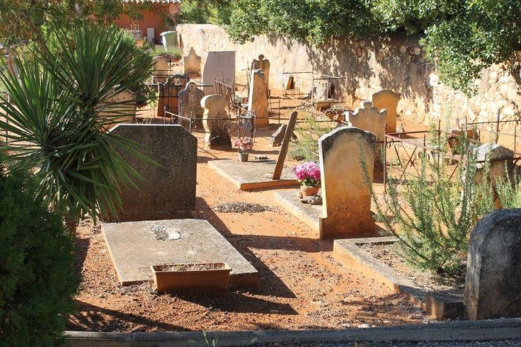Tout savoir sur la concession au cimetière. Terrain concédé pour l'inhumation des défunts, la concession est sujette à de nombreuses règles.