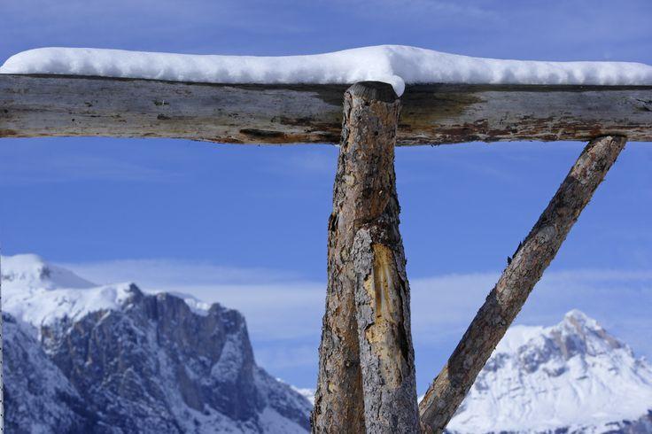 Gadertal/Val Badia - Südtirol/Alto Adige Roter Hahn/Gallo Rosso