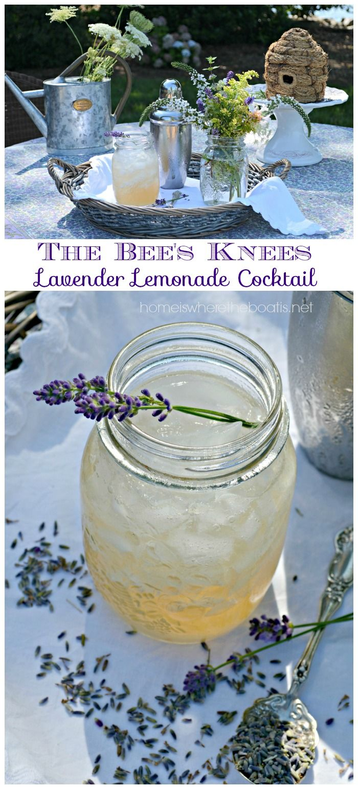 The Bee's Knees Lavender Lemonade! A classic cocktail made with gin, lemon, and honey or honey syrup with the addition of lavender added to the honey syrup for a Provençal twist!