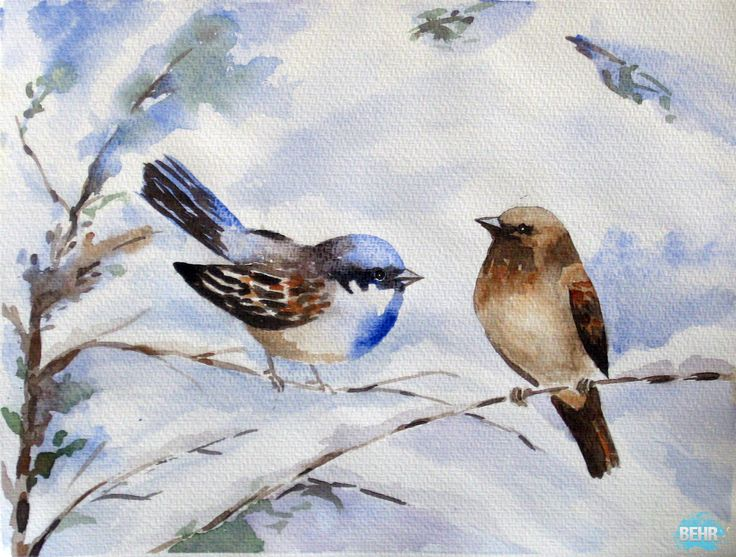 256 best Birds of a Feather images on Pinterest | Bottle, Fabric ...