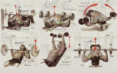 Chest Mass Workout & 5 Exercises For Building The Best Chest ~ .