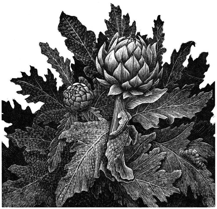 Art. For Example: 'Society of Wood Engravers' at Bankside Gallery London, 31 Jan - 19 Feb