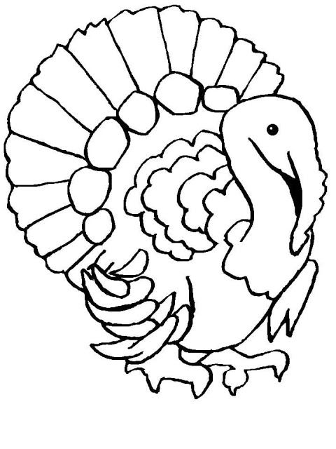 20 best Turkey Coloring Pages images on Pinterest Turkey coloring - best of realistic thanksgiving coloring pages