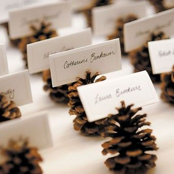 pigne segnaposto - winter escort cards