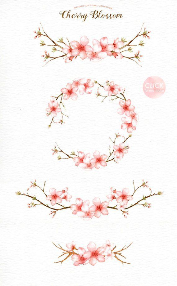 Cherry Blossom Watercolor Clip Art, Spring Flower,…
