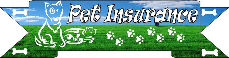 http://www.themoneylion.co.uk/insurancequotes/lifestyle/cheappetinsurancecomparison cheap pet insurance