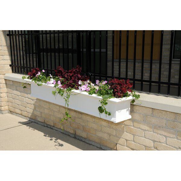 Anand 1 Piece Self Watering Vinyl Window Box Planter In 2020 Window Planter Boxes Planter Boxes Planters