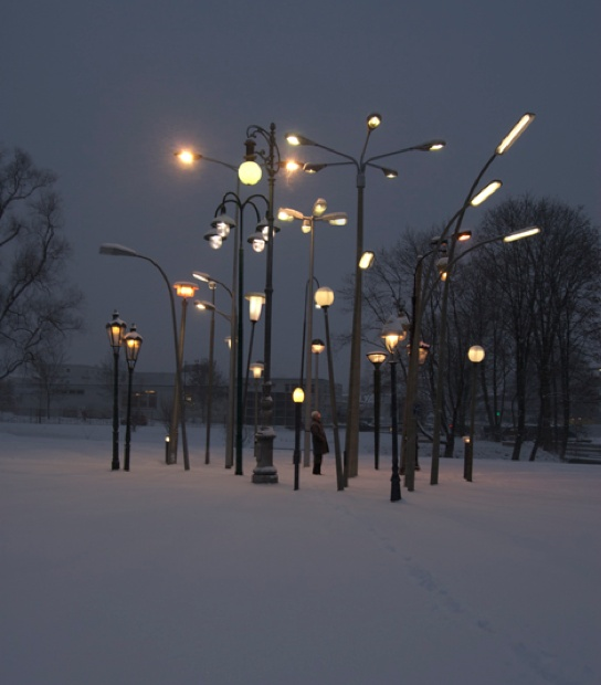 Street lamp forest
