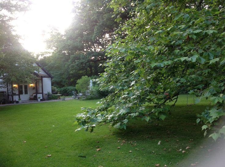 Ramlösa Brunnspark - min trädgård - min favoritplats - min trygghet