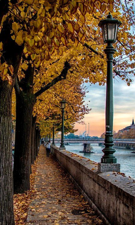 Verona, Italy in the FALL!!!! I am obsessed with this city.