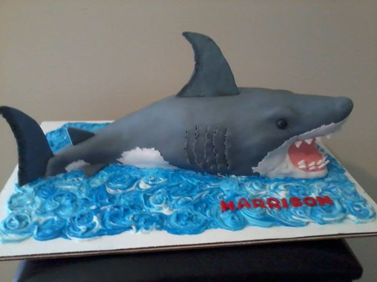 Shark cake by Lydia Scarvey