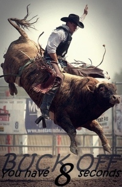 another person states: Want to become a bull rider? Then sign up for Bull Armour's bull riding clinics with bull riding champion Brad Scott and take bull riding lessons straight from the expert!