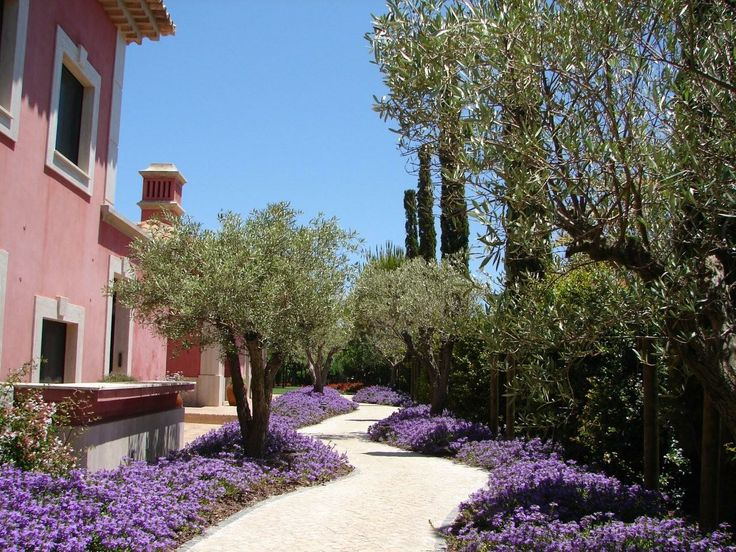 jardim mediterrâneo design jardim projeto do jardim forward jardim