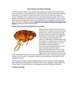Breckwell big e service manual download