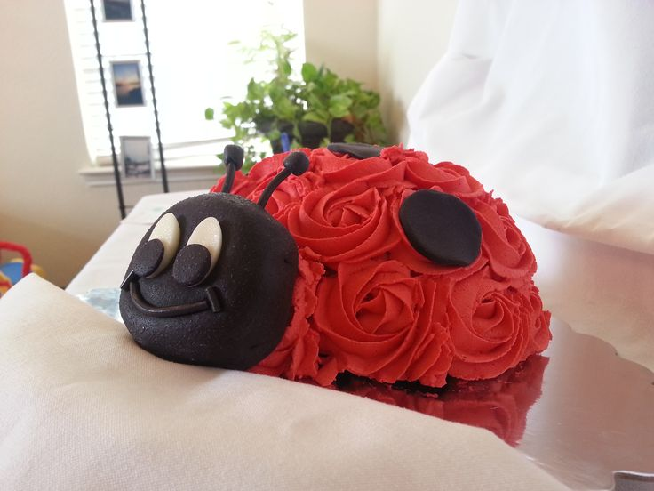 Lady Bug Smash Cake... so cute, maybe bright pink?