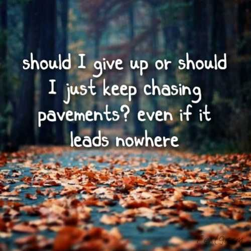 Chasing Pavements | Adele. I like this shot for fall.