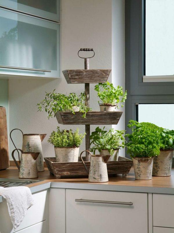 Etagenpyramide für Kräutern in der Küche | Ideen für zu ...