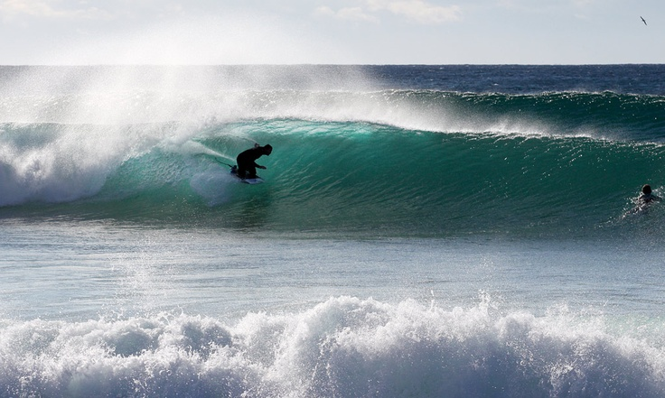 Kneeboarding surfing