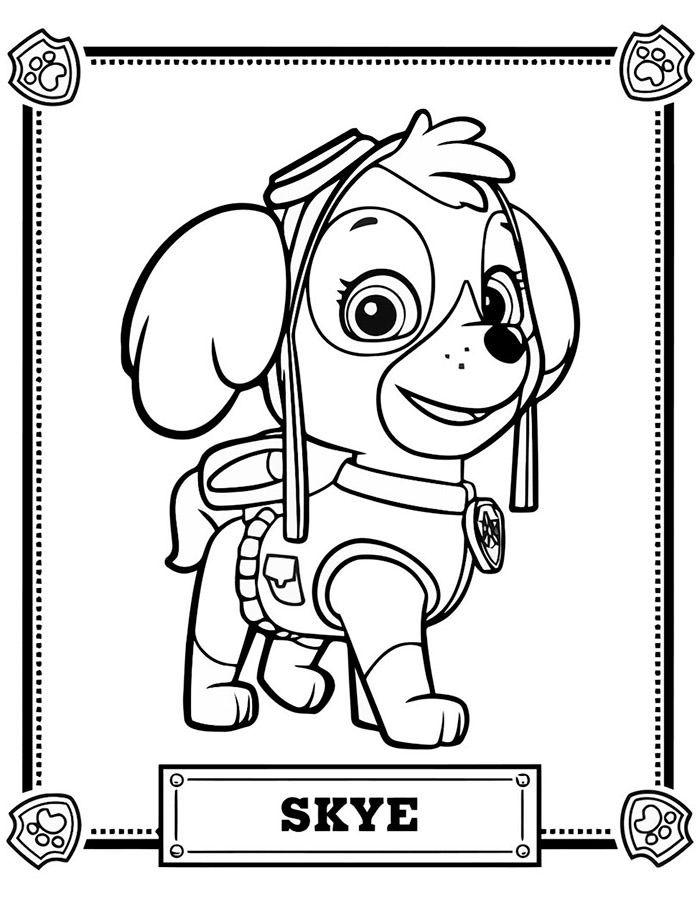 Dibujos para niños de paw patrol para pintar   Mis Pines guardados ...