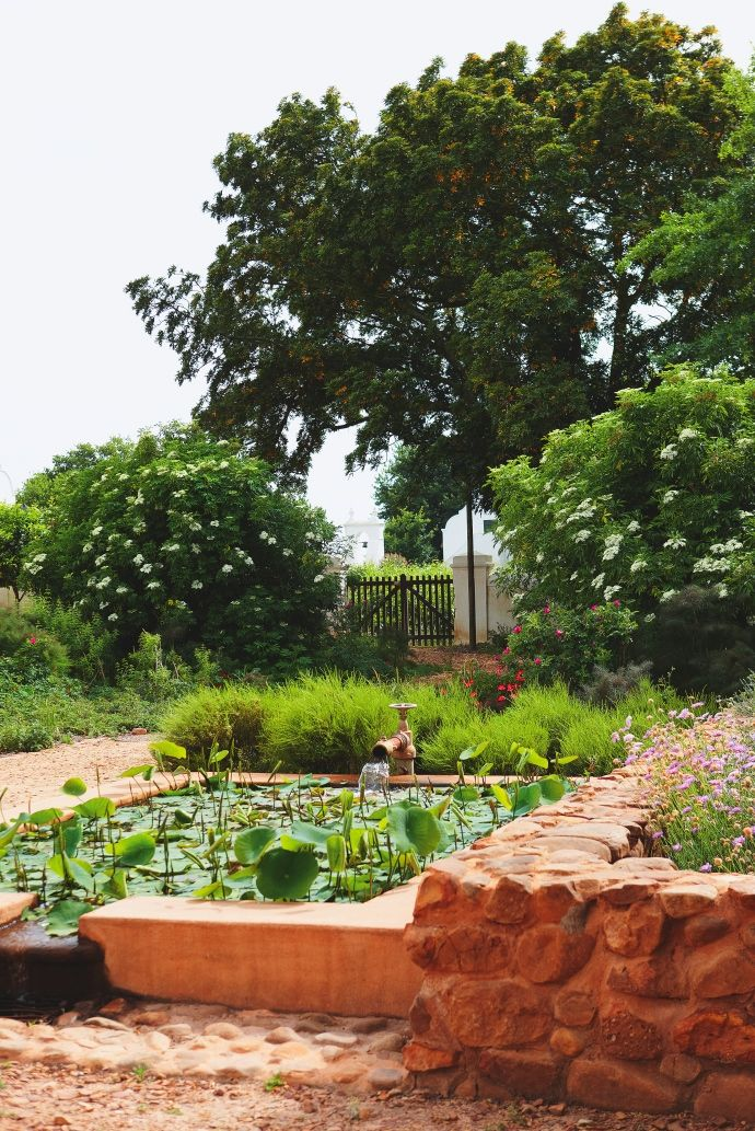 Abundant Paarl Garden | House and Leisure