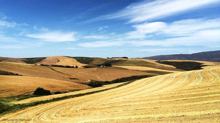 Overberg, Western Cape, South Africa   Photo by Martha van der Westhuizen