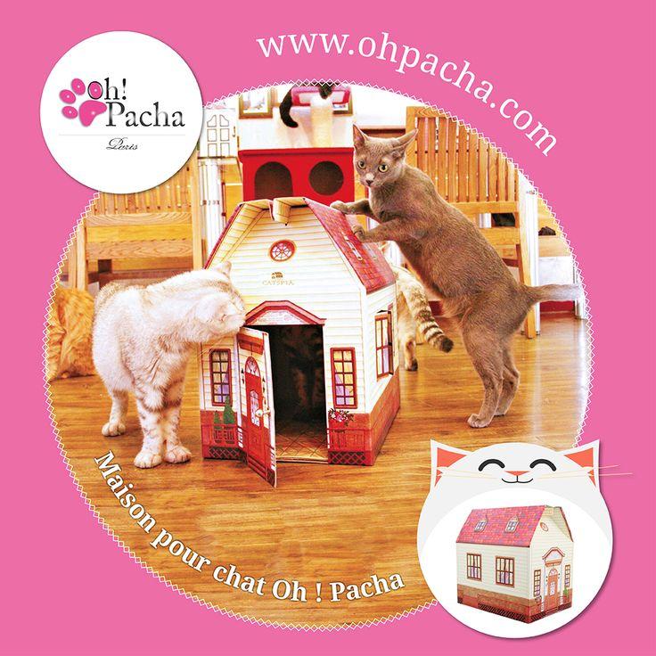 Maison pour chat ❤  Et si vous deveniez le maître le plus sympa de la Terre en offrant à votre chat un jouet qui lui conviendra pour une sieste ou bien pour son quart d'heure de folie. Boutique en ligne : http://www.ohpacha.com/29-couffin-pour-chat-et-lit