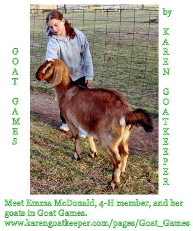 Goats are a great 4-H project.  www.karengoatkeeper.com/pages/Goat_Games
