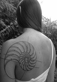 COREY CROWLEY, Atlas Tattoo, Portland, OR. Chambered Nautilus sacred geometry tattoo.