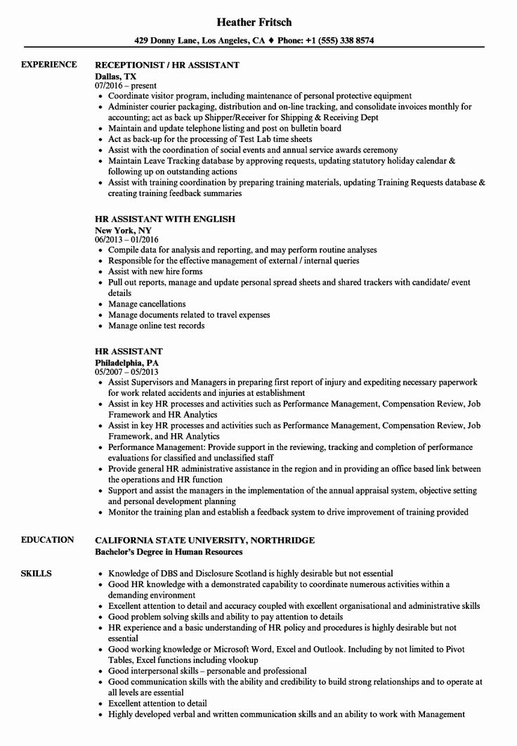 12++ Human resources resume summary Resume Examples