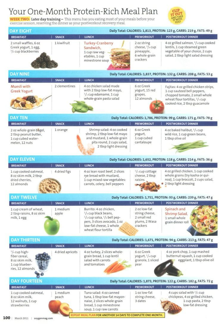 One Month Protein Rick Meal Plan