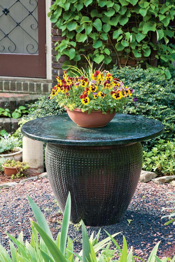 121 Container Gardening Ideas