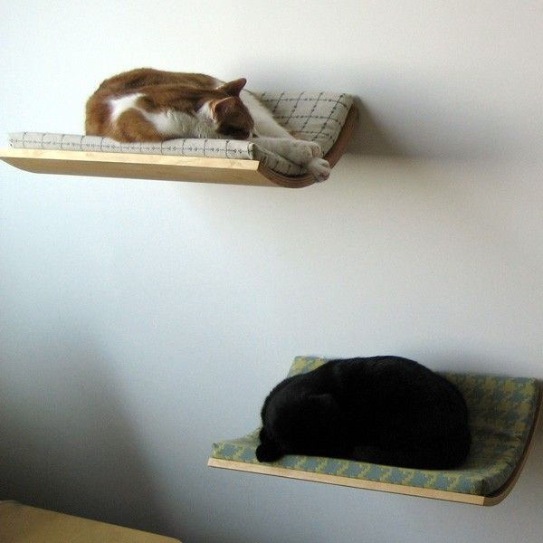 Curve Cat Beds by Akemi Tanaka give your feline friends an elevated place to lounge that is out of reach of the dog and kids, ensuring that they get the uninterupted leisure time that they are so entitled to as a cat!  :o)  lol