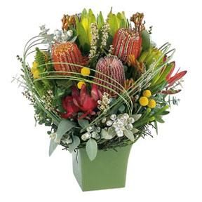 I love australian native flowers!