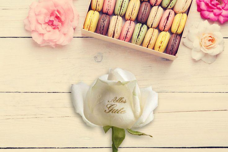 Glück und Freude schenken! Mit Blumen erreichen Sie direkt das Herz Ihrer Kunden! Einfach einmal Danke sagen und damit viel Freude bereiten. Mit der Königin der Blumen - bedruckt mit Ihrem Logo- können Sie mehr sagen als mit 1.000 Worten. Diese Rose ist ca. 45 cm groß und die Rosenfarbe können sie Wählen.