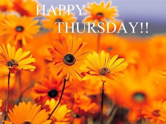 Happy Thursday Pictures, Photos, and Images for Facebook, Tumblr, Pinterest, and Twitter