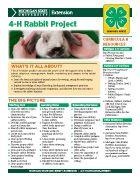 MI 4-H Rabbit Project Snapshot