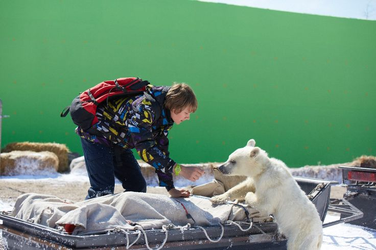 Il viaggio con Nanuk… il branco degli orsi. Rivive tutto vividamente...