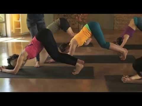 Evde Yoga Zeynep Çelen İle Temeller - YouTube