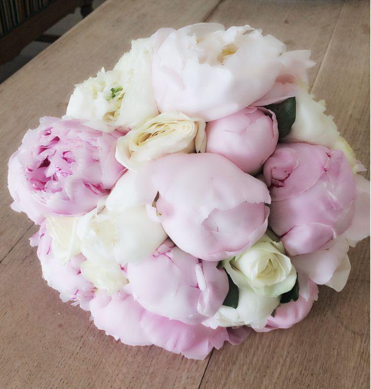 My flowers, pioner ❤️