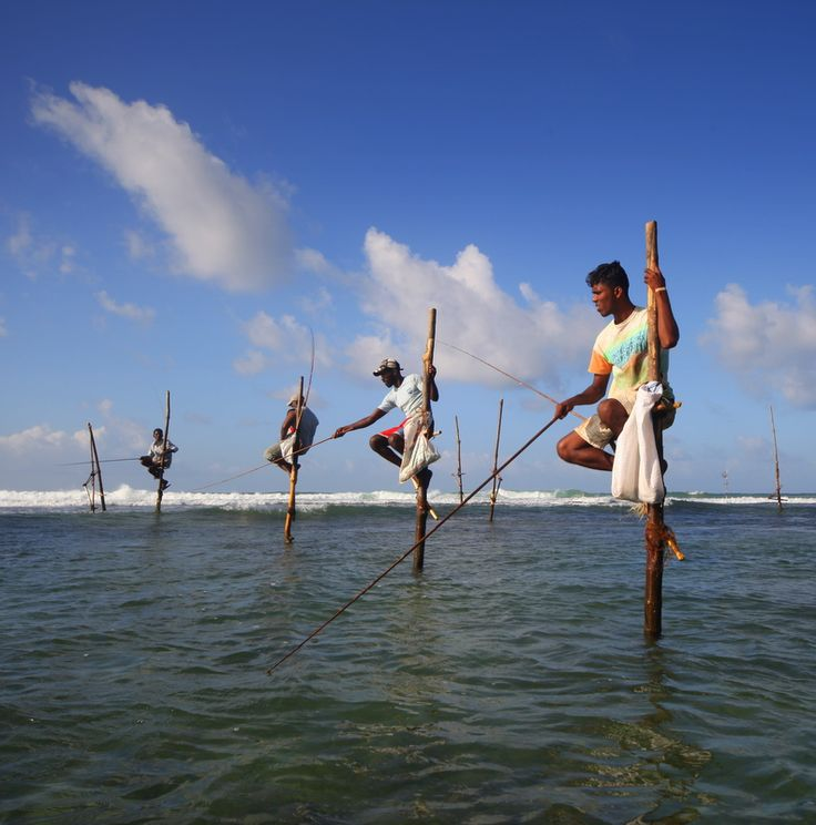 376 best fishermen and fishing boats images on pinterest for Sri lanka fishing