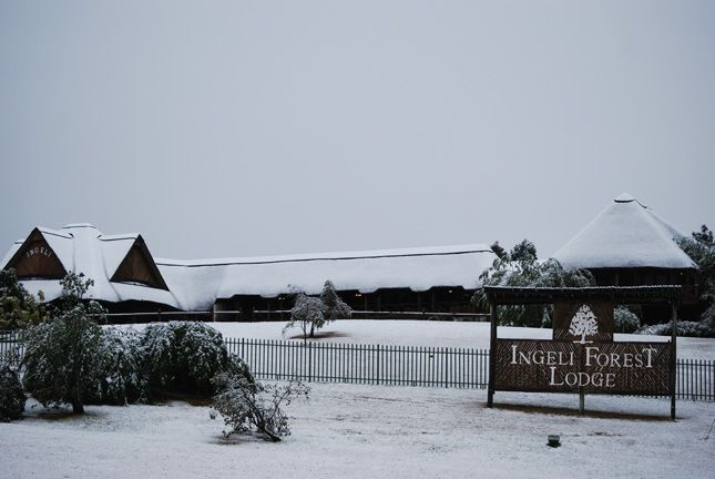 Snow at Ingeli Forest Lodge.