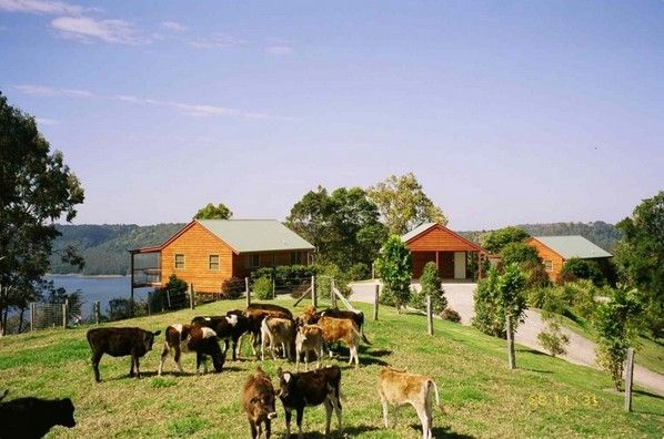 Farm Stays Near Brisbane for families Bringing the family back to where life started- in nature, with time on the farm. When parents want to rediscover that peaceful place within and children want to enjoy the endless adventures of the bush, a farm stay these holidays attends everyone's needs. Some farm stays even allow you ...