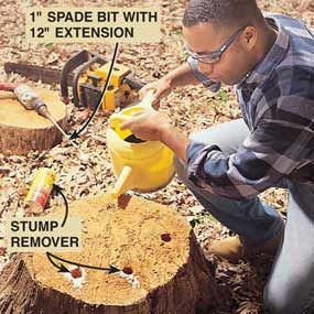 How to Remove a Tree Stump Painlessly @ http://www.familyhandyman.com/DIY-Projects/Home-Repair/Exterior-Repairs/Other-Exterior-Repairs/how-to-remove-a-tree-stump-painlessly/Step-By-Step
