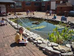 Great Learning Spaces - I love a wetland!