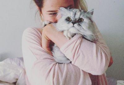 20 comptes Instagram des animaux les plus cutes de Montréal
