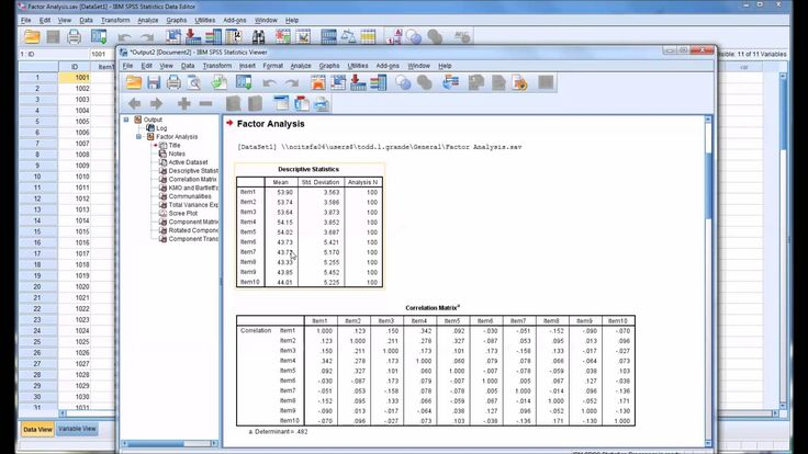 how to run descriptive statistics in spss